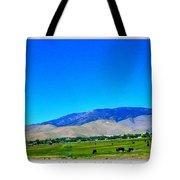 Nevada Range Tote Bag