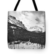 Never Summer Wilderness Area Panorama Bw Tote Bag