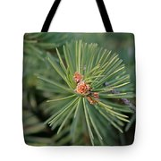 New Blue Spruce Buds Tote Bag