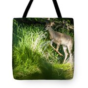 New Buck Tote Bag