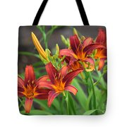 New Daylilies Tote Bag