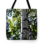 New England Birch Tote Bag