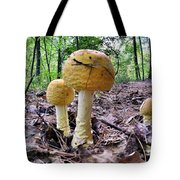 New England Fly Agaric Tote Bag