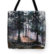 New England Landscape No.214 Tote Bag