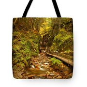 New England Waterfall Gorge Tote Bag