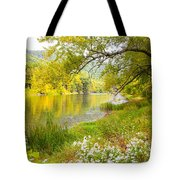 New Englands Early Autumn Tote Bag