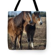 New Forest Ponies Tote Bag