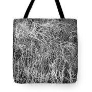 New Grasses Glacier National Park Bw Tote Bag