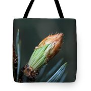 New Growth - Hats Off Tote Bag