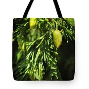 New Growth 25848 Tote Bag