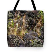 New Growth In A Desolate Area Tote Bag