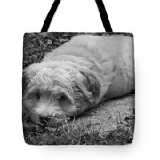 New Home Tote Bag