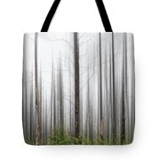 New Jersey Pine Barrens Tote Bag