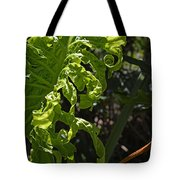 New Leaf  Tote Bag