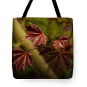 New Leaves For Napanee Tote Bag