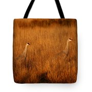 New Mexico Gold Tote Bag