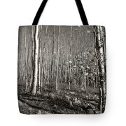 New Mexico Series - Bare Autumn Bw Tote Bag