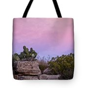 New Mexico Sunset With Cacti Tote Bag