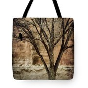 New Mexico Winter Tote Bag by Carol Leigh