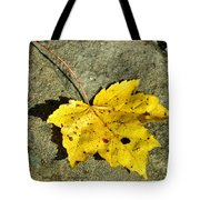 New Moon Tote Bag by JAMART Photography