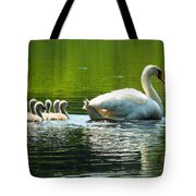 New Mute Swan Family In May Tote Bag