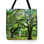 New Orleans City Park - Live Oak Tote Bag