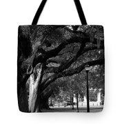 New Orleans Oaks Tote Bag