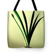 Fanned Leaves Of An Amaryllis Tote Bag