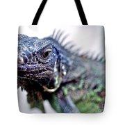 Close Up Beady Eyed Iguana Tote Bag