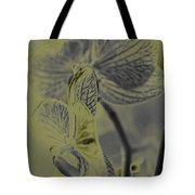 New Photographic Art Print For Sale Orchids 11 Tote Bag
