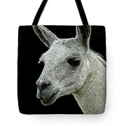 New Photographic Art Print For Sale   Portrait Of  Llama Against Black Tote Bag