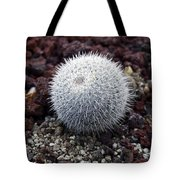 New Photographic Art Print For Sale White Ball Cactus Tote Bag