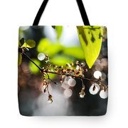 New Rain Tote Bag