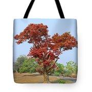 New Spring Leaves On Tree  Tote Bag