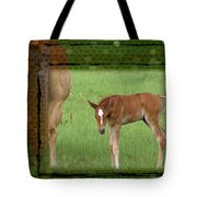 New To The World Tote Bag