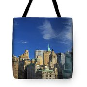 New York City From Central Park Tote Bag by Dan Sproul
