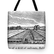 New York Salina, 1841 Tote Bag