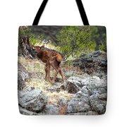 Newborn Elk Calf Tote Bag