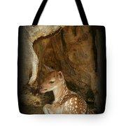 Newborn Fawn Tote Bag
