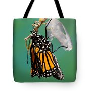 Newly-emerged Monarch Butterfly Tote Bag