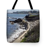 Newport's Cliff Walk View Tote Bag