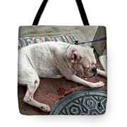 Newsworthy Dog In French Quarter Tote Bag