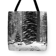 Next Season Christmas Trees Tote Bag