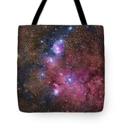 Ngc 6559 Emission And Reflection Tote Bag