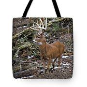 Nice Buck Tote Bag