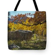 Nice Setting For A Rock Tote Bag