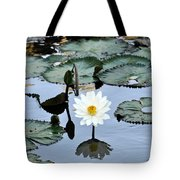 #night Blooming Water Lily Tote Bag