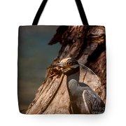 Night Heron And Crawdaddy Tote Bag
