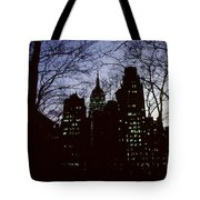 Night Lights Empire State Two Trees Tote Bag