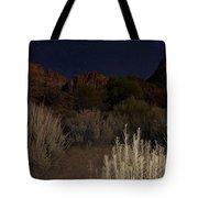 Night Sky Over Zion II Tote Bag